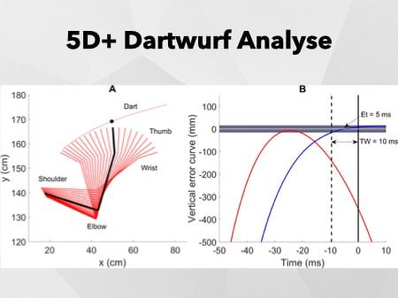 5D+ Analyse Grafik